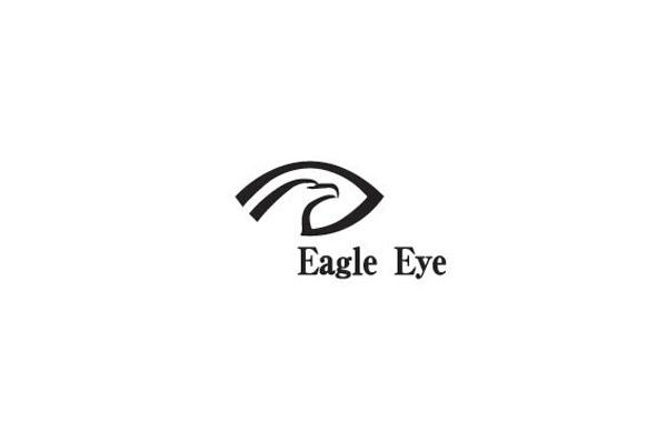 标志图形将老鹰和眼睛完美融合在一起,充分表达了logo